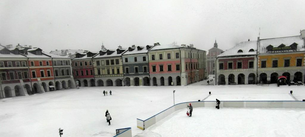 Ryn Wilki lod snieg